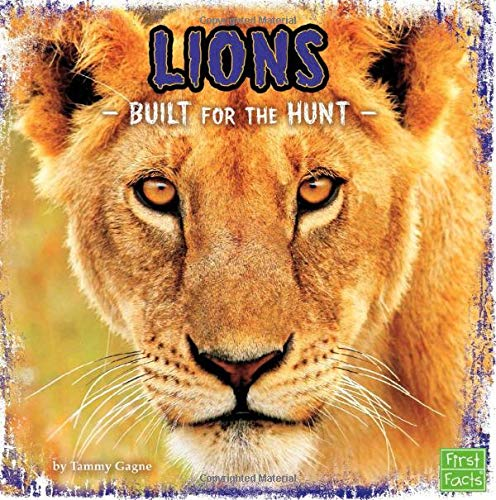Lions: Built for the Hunt (Predator Profiles): Gagne, Tammy