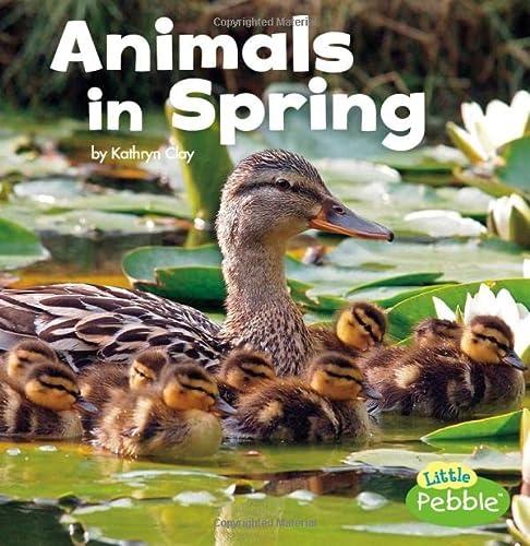 9781491483060: Animals in Spring (Celebrate Spring)