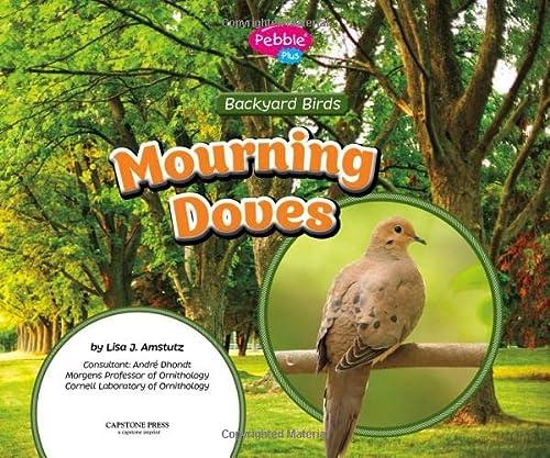 Mourning Doves (Backyard Birds): Amstutz, Lisa J.