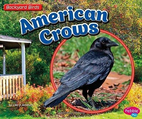 9781491485156: American Crows (Backyard Birds)