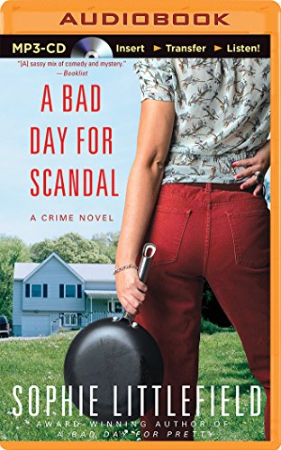 A Bad Day for Scandal: A Crime Novel (Stella Hardesty): Littlefield, Sophie