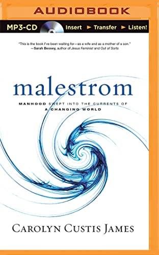 Malestrom: Manhood Swept Into the Currents of a Changing World: James, Carolyn Custis