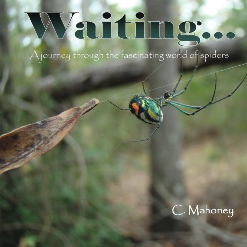 9781492100799: Waiting: a journey through the fascinating world of spiders