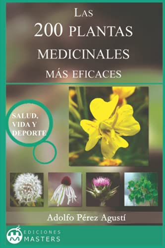 9781492130840: Las 200 Plantas Medicinales más eficaces (Spanish Edition)