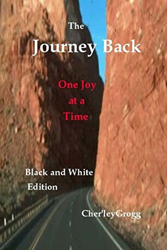 9781492169314: The Journey Back--B&W Edition: One Joy at a Time