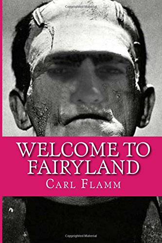 9781492183341: Welcome To Fairyland