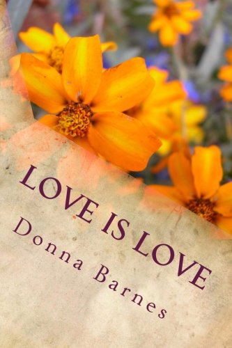 9781492196563: Love is Love