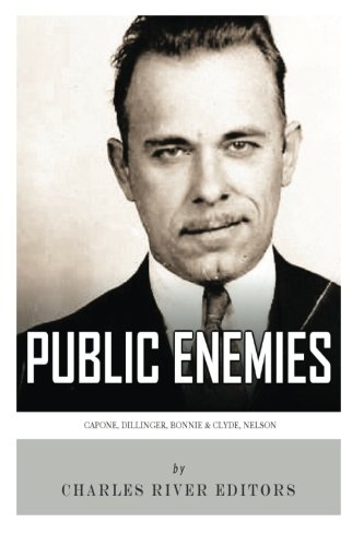 9781492229605: Public Enemies: Al Capone, John Dillinger, Bonnie & Clyde, and Baby Face Nelson