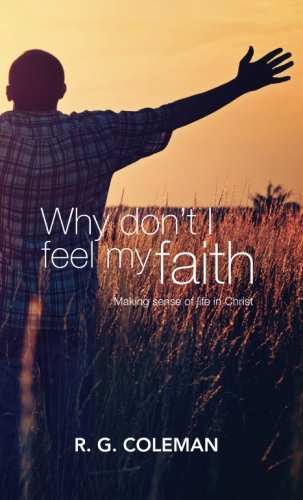 9781492295600: Why Don't I Feel My Faith