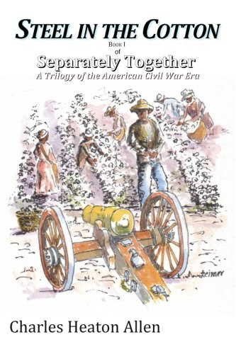 9781492334194: Steel in the Cotton: Book I of Separately Together, a trilogy of the American Civil War era (Volume 1)