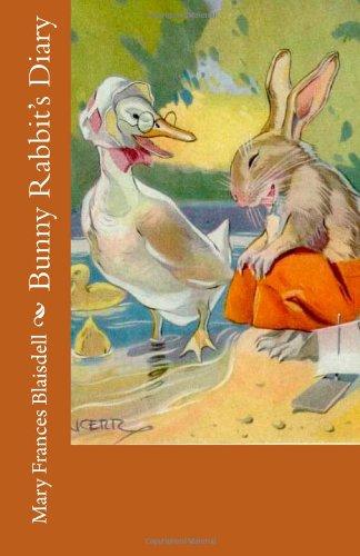 9781492343110: Bunny Rabbit's Diary