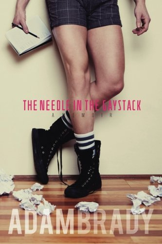 9781492353911: The Needle in the Gaystack: A Memoir