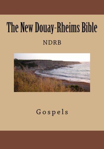 9781492363552: The New Douay-Rheims Bible