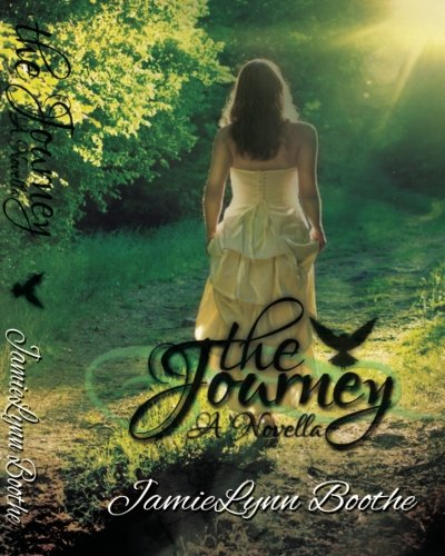 9781492393627: The Journey