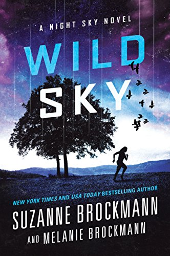 9781492604846: Wild Sky: A Night Sky novel
