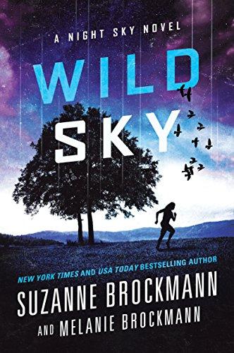 9781492623144: Wild Sky: A Night Sky novel
