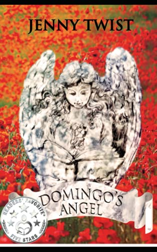 9781492755616: Domingo's Angel