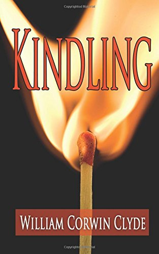 9781492899518: Kindling: Igniting a Life of Insight and Purpose