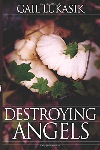 Destroying Angels: A Leigh Girard Mystery: Gail Lukasik