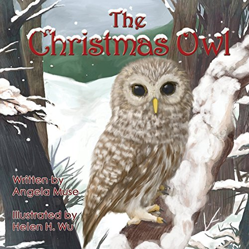 9781492936732: The Christmas Owl