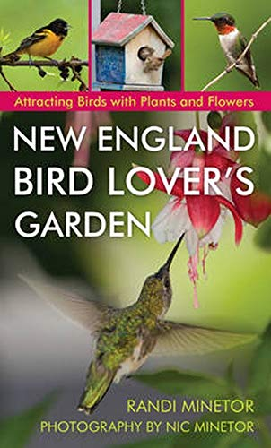 New England Bird-Lover's Garden: Attracting Birds with Plants and Flowers: Randi Minetor