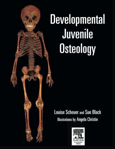 9781493301898: Developmental Juvenile Osteology