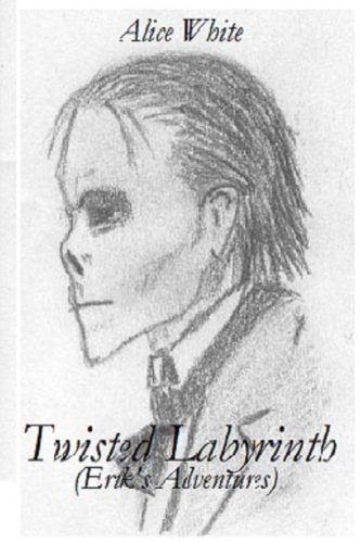 9781493546633: Twisted Labyrinth: (Erik's Adventures)