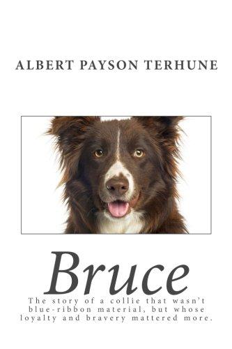 9781493547227: Bruce