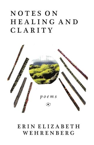 9781493600809: Notes On Healing and Clarity: poems