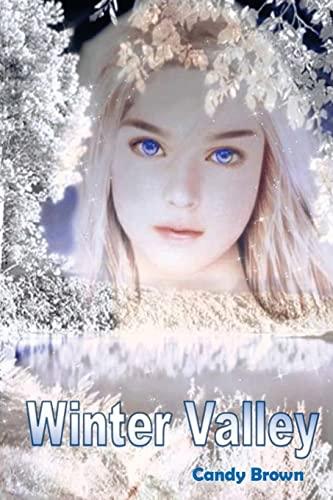 9781493707799: Winter Valley