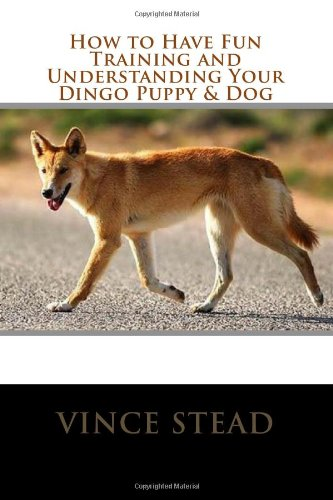 9781493717200: How to Have Fun Training and Understanding Your Dingo Puppy & Dog