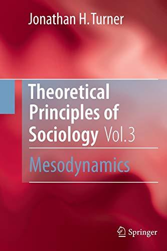 9781493900473: Theoretical Principles of Sociology, Volume 3: Mesodynamics
