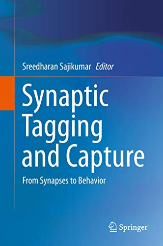 9781493917600: Synaptic Tagging and Capture: From Synapses to Behavior