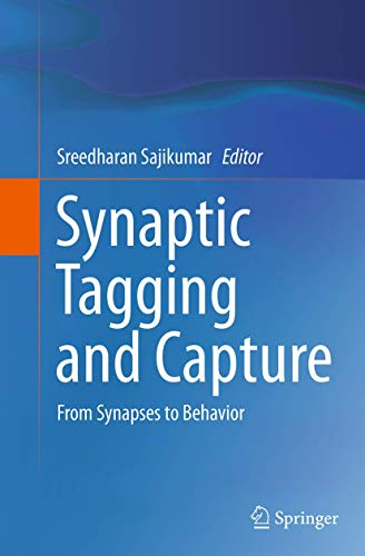 9781493955374: Synaptic Tagging and Capture: From Synapses to Behavior