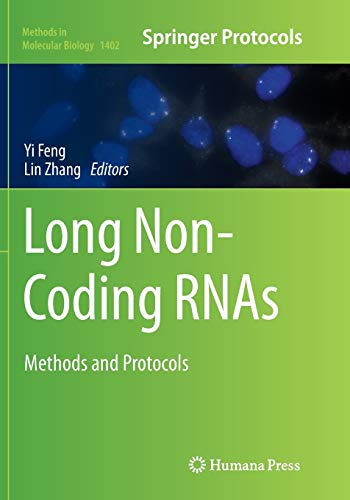 9781493980352: Long Non-Coding RNAs: Methods and Protocols (Methods in Molecular Biology)