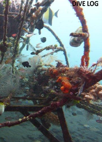 9781494207465: Dive Log: zum festhalten der schönsten Momente. von Kalsari