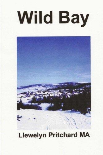 Wild Bay (Port Hope Simpson Mysteries) (Volume 6) (Korean Edition): Llewelyn Pritchard MA