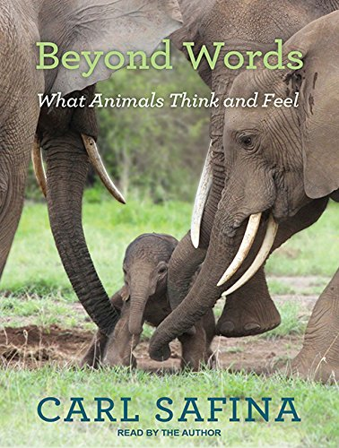 9781494562540: Beyond Words: What Animals Think and Feel