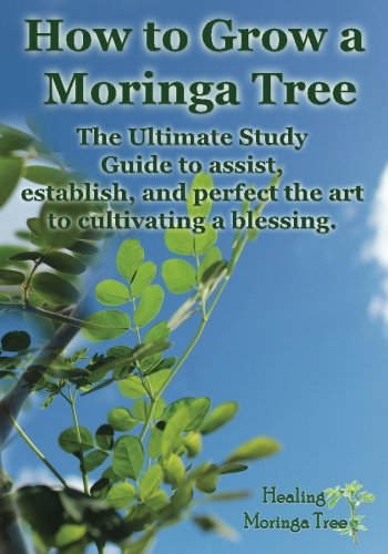 9781494851446: How to grow a Moringa Tree: The Ultimate Study Guide to assist, establish, and perfect the art to cultivating a blessing.