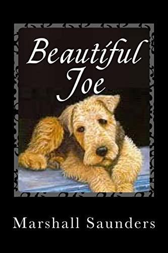 9781494873745: Beautiful Joe