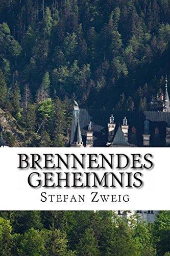9781494876401: Brennendes Geheimnis