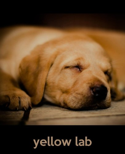 9781494890469: Yellow Lab: A Gift Journal for People who Love Dogs: Yellow Lab Puppy Edition