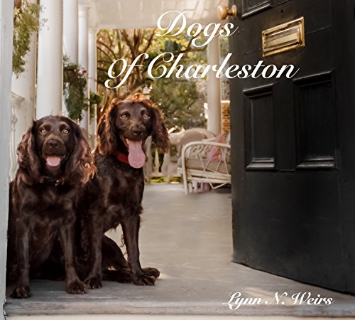 9781495110528: Dogs Of Charleston