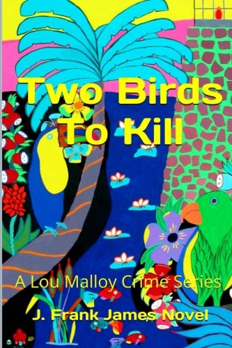 Two Birds to Kill (Paperback): J Frank James