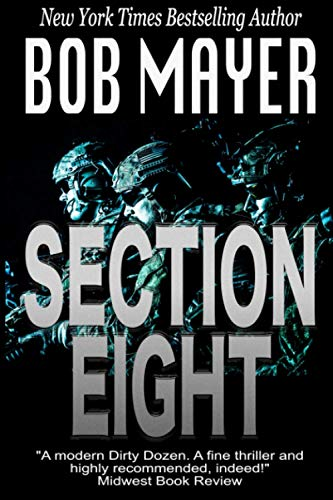 9781495417115: Section Eight (Shadow Warriors)