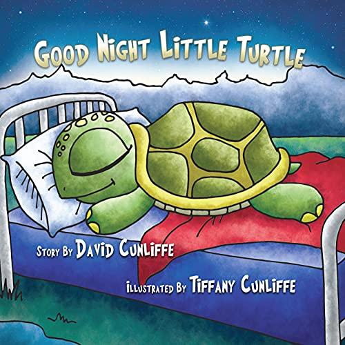 9781495908637: Good Night Little Turtle