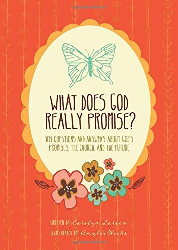 What Does God Really Promise?: 101 Questions: Weeks, Amylee (ilt)/