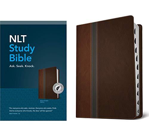 9781496416674: NLT Study Bible, TuTone