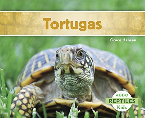 Tortugas (Reptiles) (Spanish Edition): Hansen, Grace