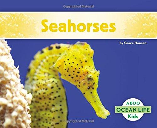 9781496612557: Seahorses (Ocean Life (Paperback))
